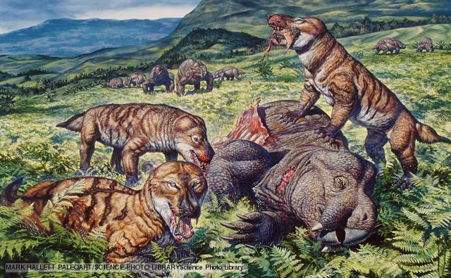 Mammal-Like Reptiles